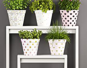 3D model Decorative plant set-63