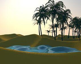 desert 3D asset