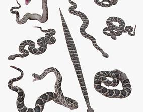 low-poly Eastern Diamondback Rattlesnake - 3D Mesh
