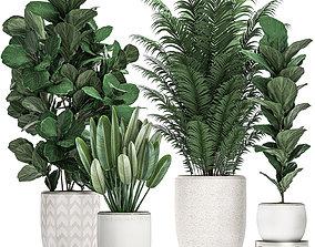 Decorative plants in a white pot for the interior 490 3D