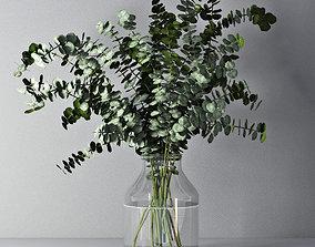 Eucalyptus 01 leaf 3D model