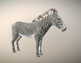 Zebra Animated Low Poly 3D asset VR / AR ready