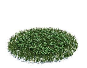 3D Green Grass Clovers