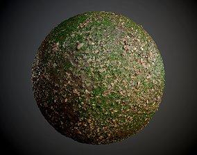 Grass Stones Muddy Soil Ground Seamless PBR Texture 3D