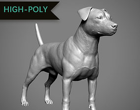 3D printable model Jack Russell High-Poly