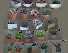 FlowerSET 3D