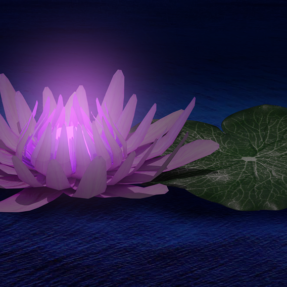 Glow Water Lily