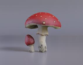3D model Mushroom Amanita