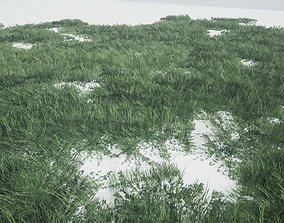 Grass Forest 3D model