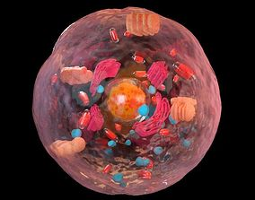 3D Eukaryotic cell - arnold render - maya