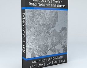 Mexico City Road Network and Streets 3D model
