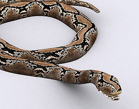 animated 3DRT - Snake