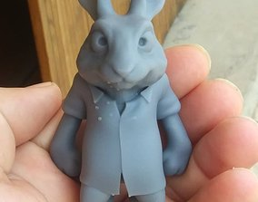 Rabbit ready to print