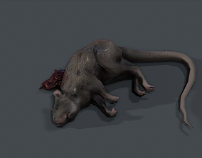 Dead Rat 3D model