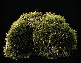 Moss Low Poly 15 3D asset