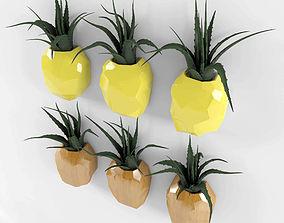 Pineapple flower set 3D