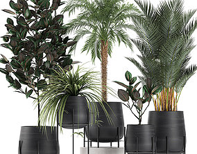 3D model Decorative plants for the interior in white 2