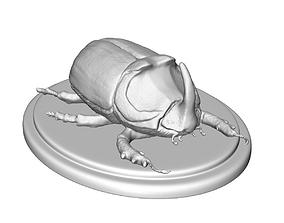 rhinoceros beetle 3D print model