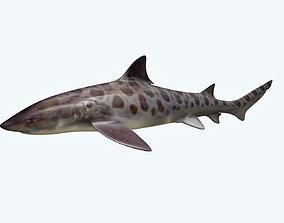 Leopark Shark 3D