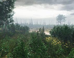 European Vegetation Pack Two Unity 3D model