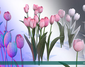 3D asset Tulips very LOW POLY detailed 2
