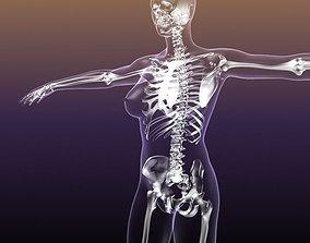 Female Skeleton in Woman Body Anatomy 3D model