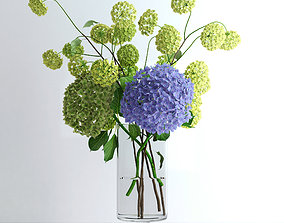 3D Hydrangeas and Viburnum