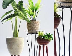 3D model nature Plants 97