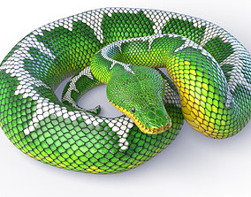 Animated Emerald Tree Boa 3D model