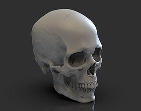 Skull halloween 3D print model