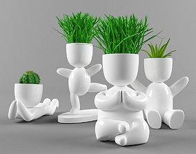 Plants in decorative pots plants 3D model