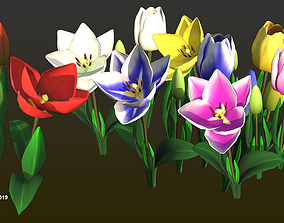 3D asset Flower Tullip