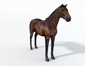 Horse 3D model VR / AR ready