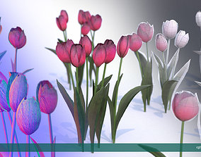 Tulips very LOW POLY detailed textures 63 3D model