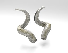 Horns of a screw-horned goat 3D asset