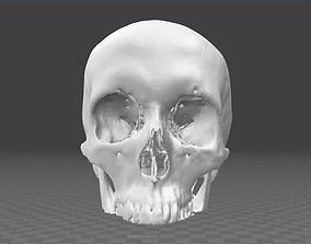 3D model Human Skull male - age 32