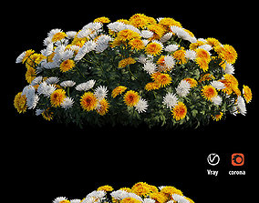 plant Chrysanthemum flower Plant set 08 3D model