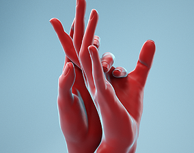 Washing Realistic Hands Model 23