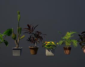 3D model realtime Plants