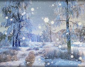 3D asset Winter Nature