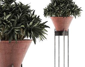 3D model Plants Collection 49