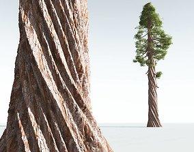 3D EVERYPlant Coastal Redwood 04 --12 Models--