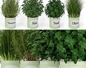3D Plants collection 202