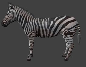 3D model animated game-ready Zebra