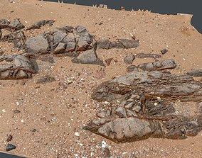 Photoscan Beach Rock 0009 only HighPoly Mesh 16K 3D