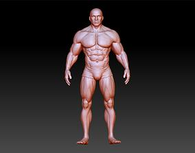 Male Human Reference High Poly 3D print model