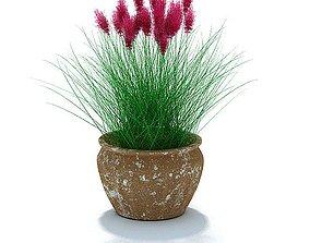 3D model Purple Flower Grass Plant