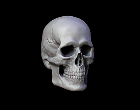 Human Skull Variations Low-poly 3D model VR / AR ready