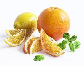 3D model Citrus