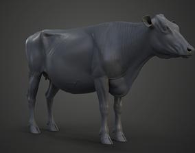 Holstein Female Model 3D